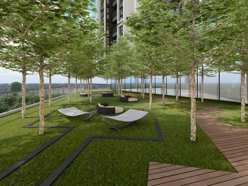 forest-garden